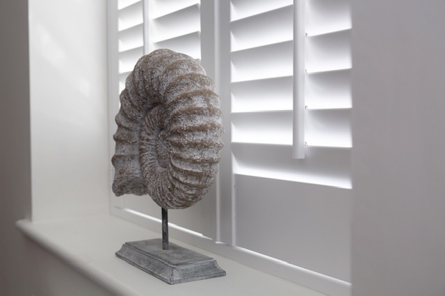 Fossil ornament on window sill